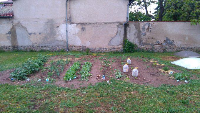 Bienvenue au jardin !